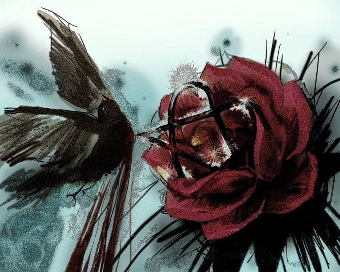 77879_nightingale_and_the_rose_by_malimalia-d4mn4y7.jpg